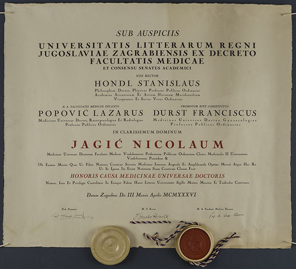 Nikola Jagić HMMF