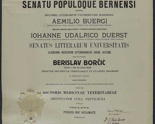 Berislav Borčić HMMF
